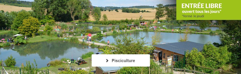Pisciculture : étangs de pêche